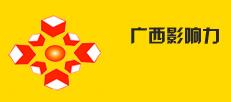 广西影响力公司